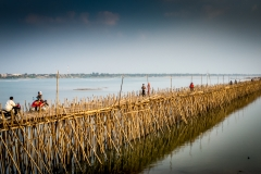 Bamboo Bridge 01 (1 of 1)