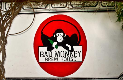 Bad-Monkey,-good-brew
